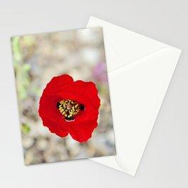 Vibrant Red Poppy, Israel Stationery Cards