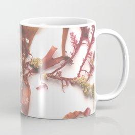 spirorbis Coffee Mug