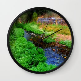 Gentle Stream at the Botanical Gardens Wall Clock