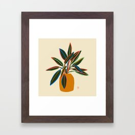 PLANT WITH COLOURFUL LEAVES  Framed Art Print