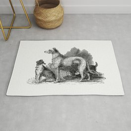 Anteater from Travels and Adventures in Southern Africa (1827) Rug