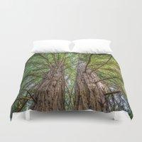 big sur Duvet Covers featuring Redwoods in Big Sur by Kayteerae