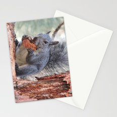 Squirrel Snack Stationery Cards