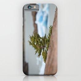 Patagonian Tree iPhone Case