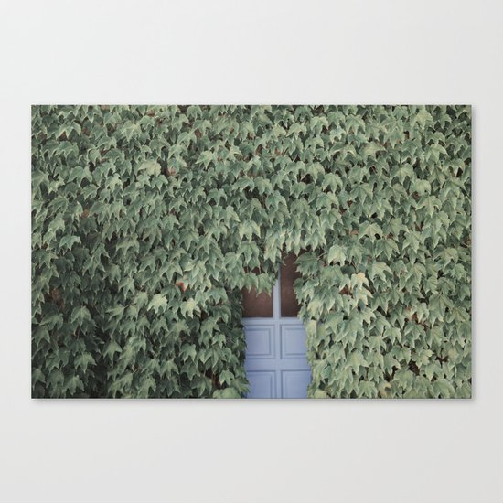 Hidden doors Canvas Print