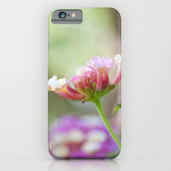 Lantana iPhone & iPod Case