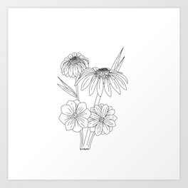 Cosmos and Coneflowers Art Print