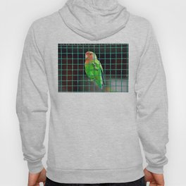 Agapornis Lovebird green bird colored small parrot in a zoo cage Hoody