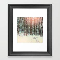 snow forest sun Framed Art Print