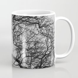 Old oak tree. Moscow district. Coffee Mug
