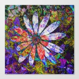 Daisy Festival Canvas Print