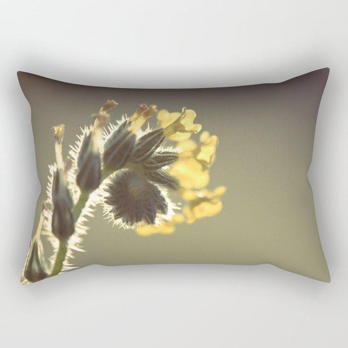 Curl Rectangular Pillow