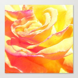 Love and Peace Pastel Rose Canvas Print