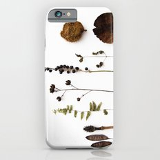 FLORA STUDY iPhone 6 Slim Case