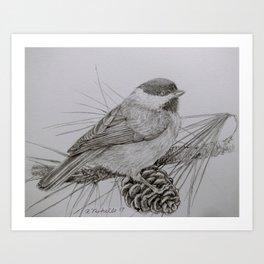 Sweet little Chickadee Art Print