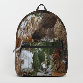 Meeting of the Hens Backpack