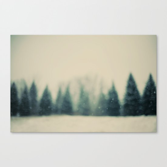 Frost and Fir Canvas Print