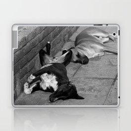 Greek Dogs Laptop & iPad Skin