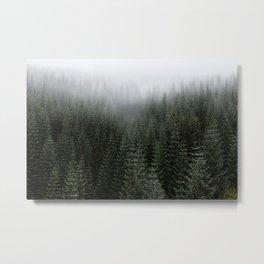 Dizzying Misty Forest Metal Print