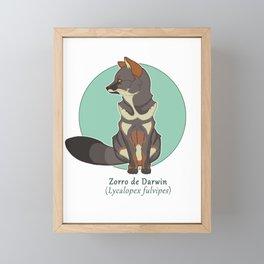 Zorro de Darwin / Darwin fox Framed Mini Art Print