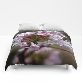 Beautiful Spring Blossoms - Koreanspice Viburnum Comforters