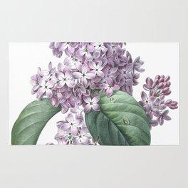 Nature, botanical print, flower poster art of Lilac Rug