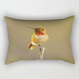 Heavenly Hummingbird by Reay of Light  Rectangular Pillow