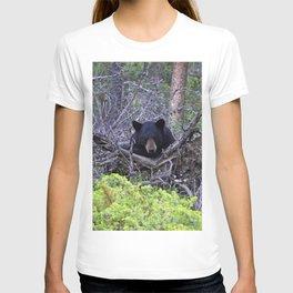 Momma bear in Jasper National Park, Canada T-shirt