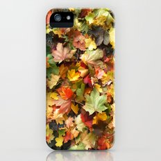 Fall Slim Case iPhone (5, 5s)