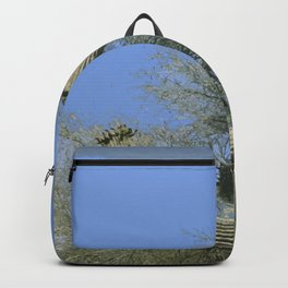 Saguaro Abstract Backpack
