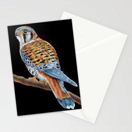 American Kestrel Stationery Cards