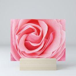 Pink Rose Petals Swirl Mini Art Print