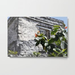 Touch of color in Tulum Metal Print