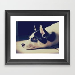 Growing Up Framed Art Print