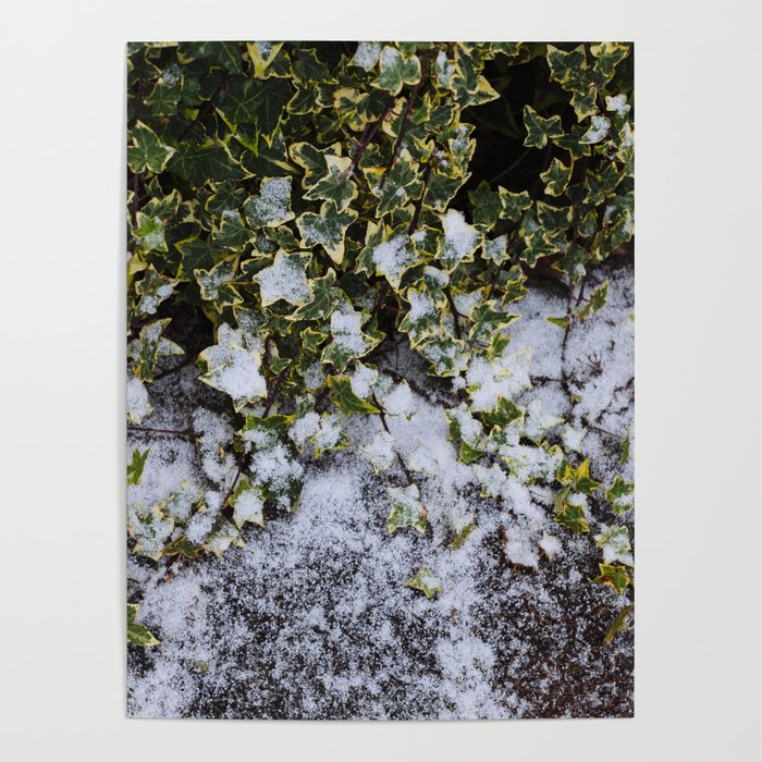 Neve em Londres - 6 Poster
