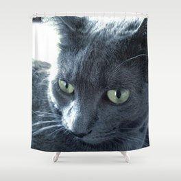 Purrr-fect Shower Curtain