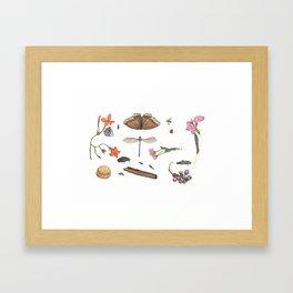 Common place miracles -Natural History Part V Framed Art Print