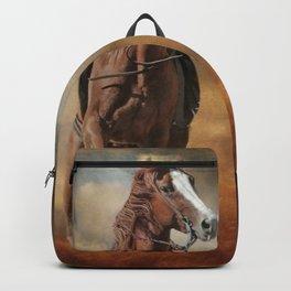 Breaking Away Backpack