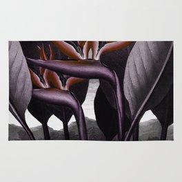 Birds of Paradise : Temple of Flora Dark Rug