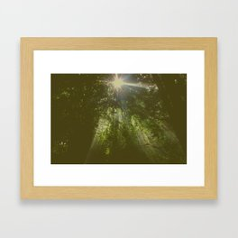 Emerald Framed Art Print