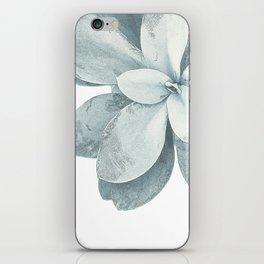 Blue Green Succulent Plant iPhone Skin