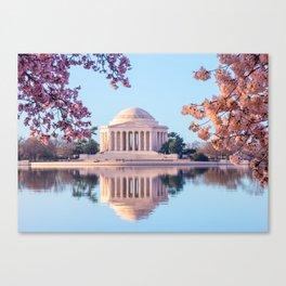 Cherry Blossoms at Jefferson Memorial in Washington DC Canvas Print