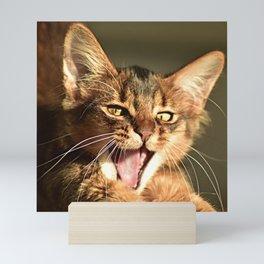 kitten yawn Mini Art Print