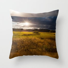 Breathtaking sunset above meadow Throw Pillow