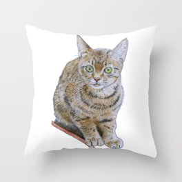 Sensitive Cat Throw Pillow