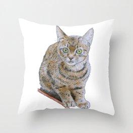 Sensitive Cat Throw Pillow