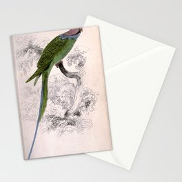 Malacca Ring Parrakeet palaeornis malaccensis8 Stationery Cards