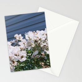 Knocked out on the side Stationery Cards