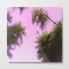 trees and dove Metal Print