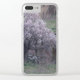 Roman Landscape Clear iPhone Case
